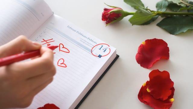Rose und Kalender mit 14. Februar.