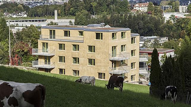 Das europaweit erste Haus für MCS-Kranke steht an einem Hang in Zürich Leimbach.