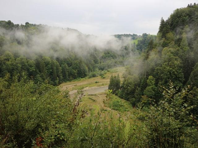 Blick von einem Hügel auf eine bewaldete Fläche mit einem Fluss, über die Nebelschwaden ziehen.