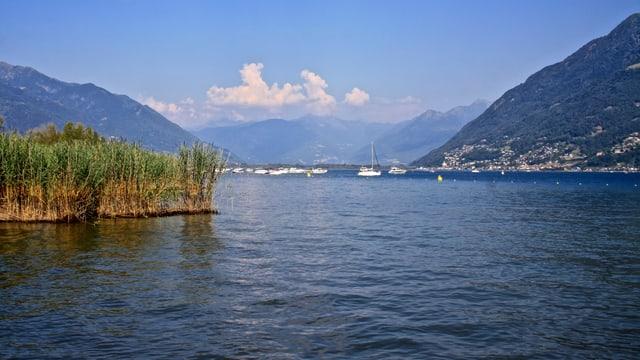 Blick vom Maggiadelta Richtung Bellinzona.