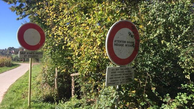 Nebenweg am Waldrand mit Hinweistafeln auf Grenzübertritt.