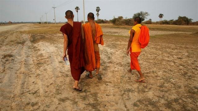 Buddhistische Mönche schreiten im kambodschanischen Dorf Trapang Chhouk durch ein vertrocknetes Feld.