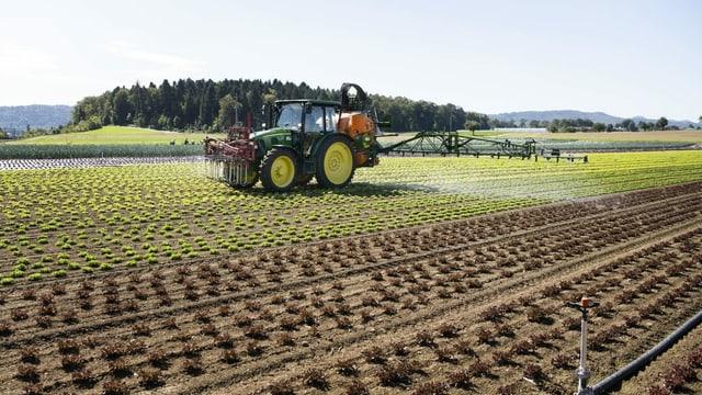 Abfuhr für beide Agrar-Initiativen – das sind die Reaktionen