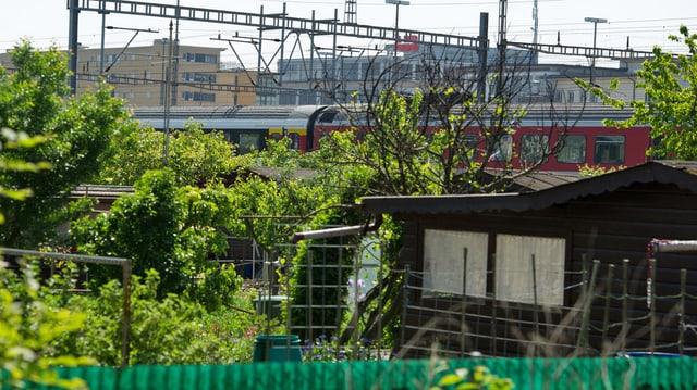 Blick auf ein dunkelbraunes Schrebergartenhaus mit einem vorbeifahrendem Zug im Hintergrund.