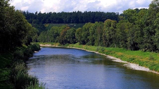 Die Thur fliesst durch das Zürcher Weinland in der Nähe von Andelfingen.