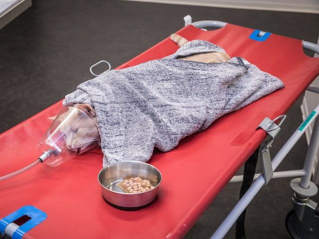 Kater Rocky liegt auf einer Bahre, eine Sauerstoffmaske über der Schnauze. Neben ihm ein Napf mit Fressen.