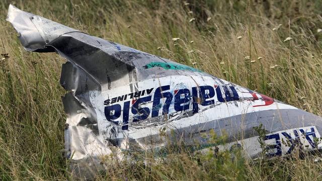 Ein Stück der abgeschossenen Boeing der Malaysia Airlines liegt auf einer Wiese.