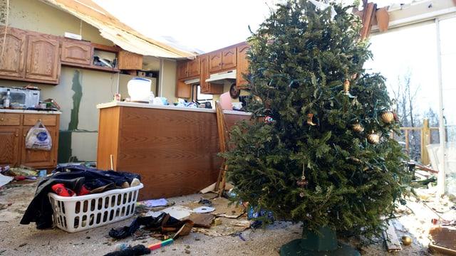 Weihnachtsbaum in einem zerstörten Haus