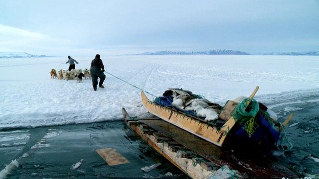 Auf einer Eisschicht ziehen zwei Männer mit Hunden einen Schlitten, auf dem Felle gestapelt sind.