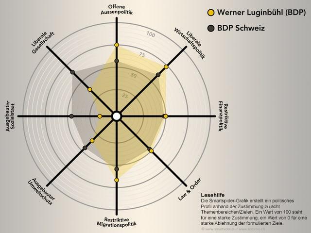 Smartspider von Werner Luginbühl