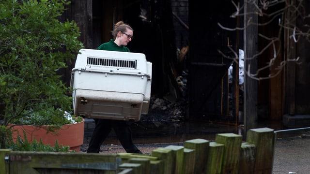 Zoomitarbeiterin trägt eine Transportbox weg.