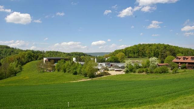 Sicht auf die Einrichtung Arxhof über die Wiesen.