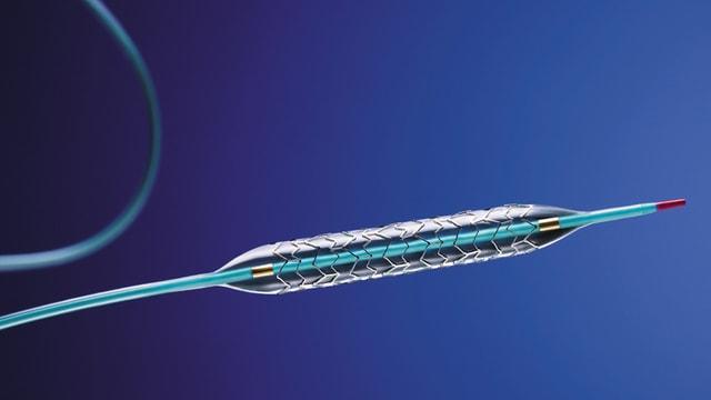 Fotografia fatga datiers d'in stent.