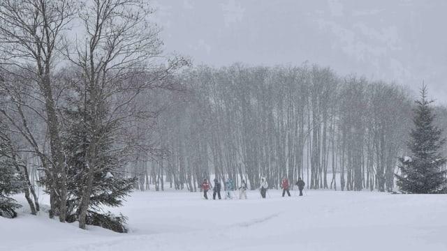 Verschneite Landschaft bei Campra.