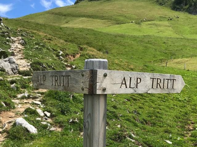 Wegweiser Alp Tritt