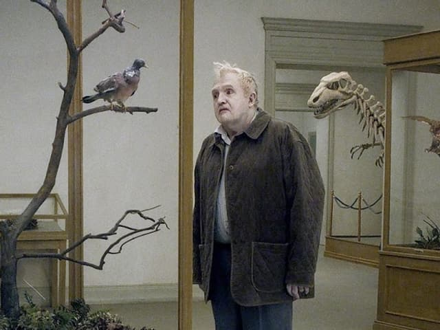 Ein Mann betrachtet in einem Museum gedankenverloren eine ausgestopfte Taube.