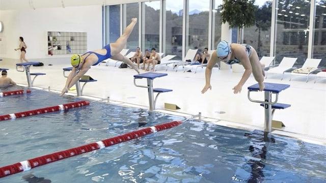 Schwimmer springen ins Wasserbecken des Luzerner Hallenbads.