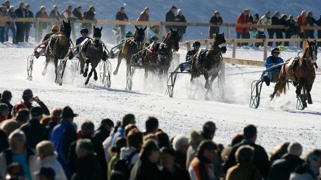 Pferde rennen auf dem zugefrorenen See