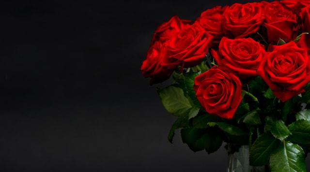 Rote Rosen: Sie gelten als Zeiche der Liebe.