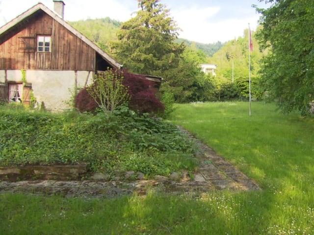 Grosse Rasenfläche hinter dem Haus