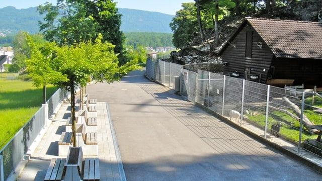 Blick auf ein Gehege, Sitzbänken und einem Weg der durch den Park führt.