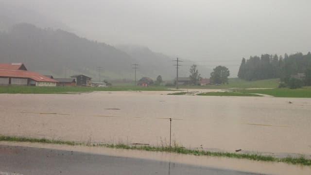 Feld unter Wasser
