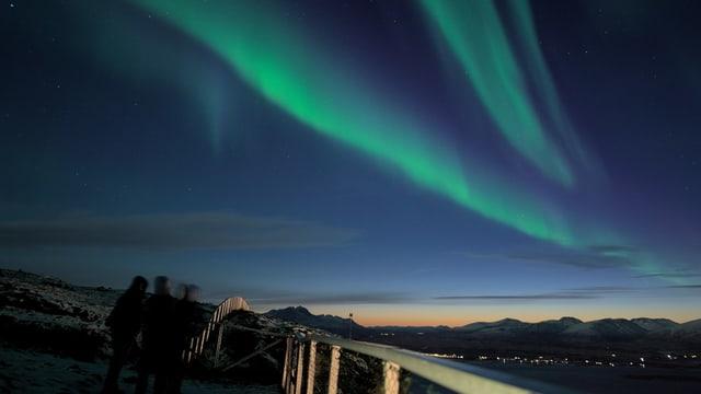 Grünes Polarlichtband über einer Landschaft