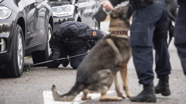 Ein Polizist inspiziert die Unterseite eines Autos, im Vordergrund wartet ein Hund auf seinen Einsatz.
