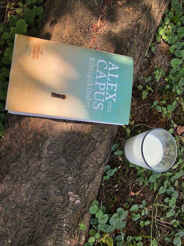 «Königskinder» liegt unter einem Baum auf einer Baumwurzel. Ein Glas Milch steht daneben.