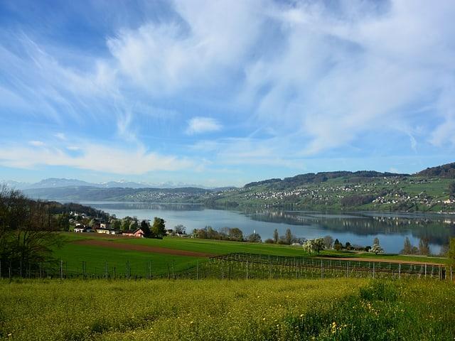 Grüne und gelbe Wiesen, See im Hintergrund. Himmel hellblau mit weissen Federwolken.