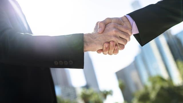 Zwei Männer schütteln sich die Hand.