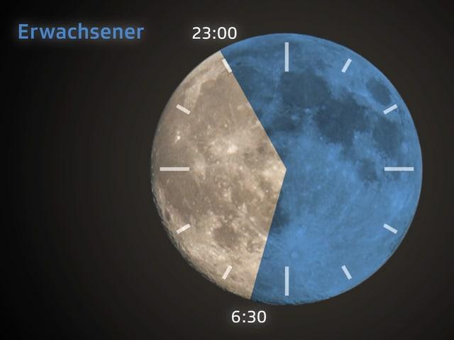 Grafische Darstellung des Schlafbedarfs eines Erwachsenen.