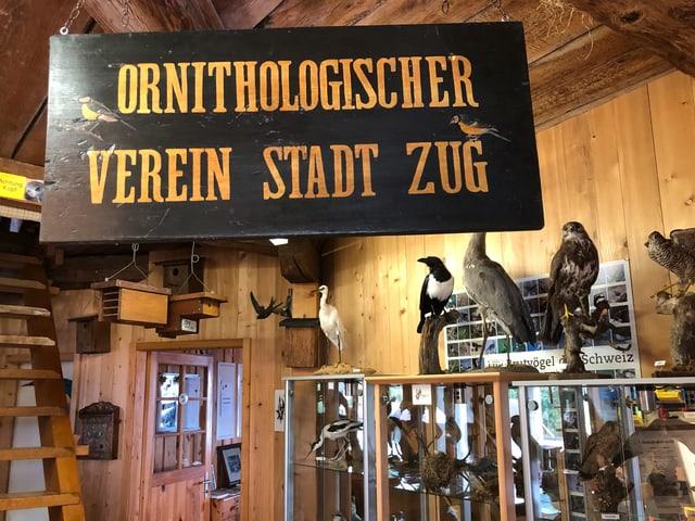 Eine aufgehängte Tafel des Ornithologischen Vereins im Pulverturm.