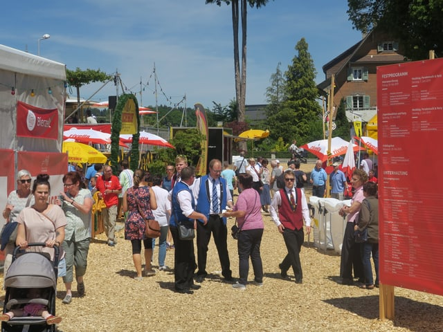 Blick auf das Festgelände des Luzerner Kantonal-Musiktags 2019.