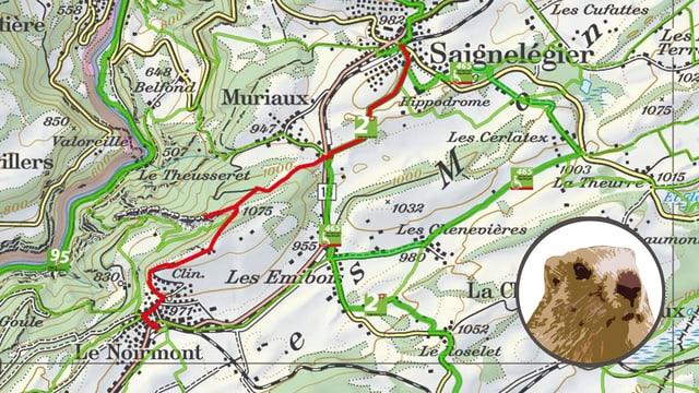 Kartenausschnitt Ruine Spiegelberg