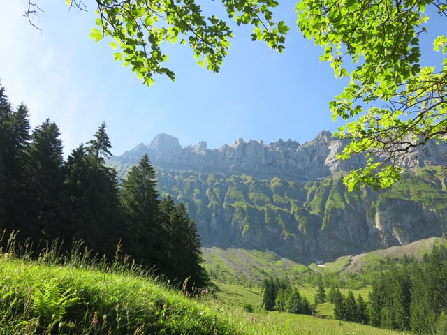 Die Felswand des Hohgants zieht steil nach oben.