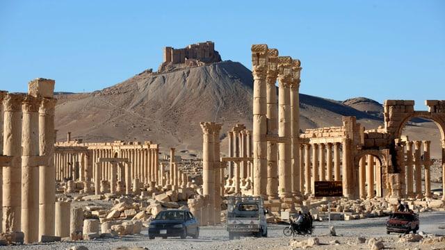 Dutzende Säulen auf dem Gelände der ehemaligen Wüstenstadt Palmyra, Autos vorne, ein Berg hinten.