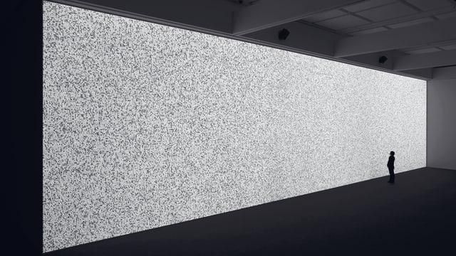 Eine Person steht vor einem grossen, breiten Bildschirm, auf dem es grau flackert.
