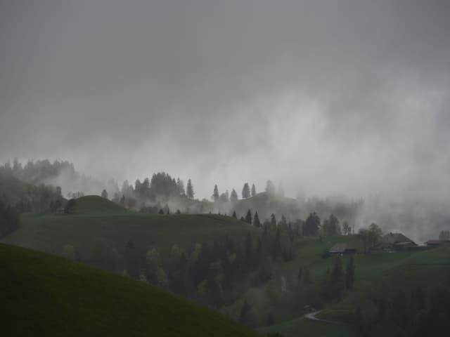 Wolkenverhangener Himmel mit grüner Hügellandschaft im Vordergrund