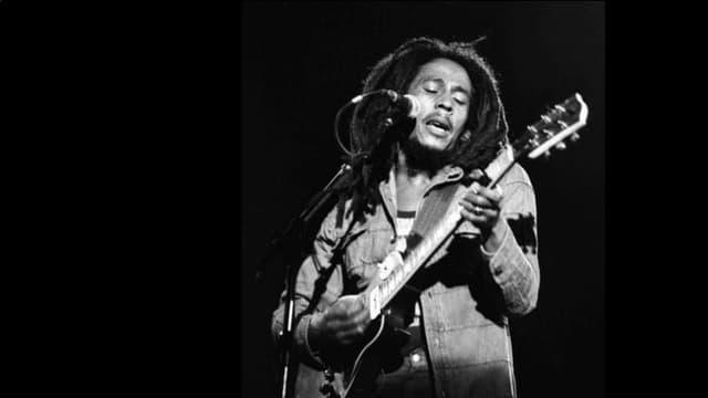 6  fatgs davart Bob Marley