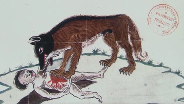 Video «Wolf: Woher kommt die Angst vor Wölfen? (3/3)» abspielen