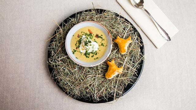 Zucchini-Peperoni-Käse-Suppe in Suppenteller auf Heu