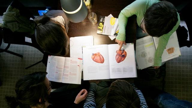 Studenten sitzen in der Bibliothek der Universitaet Hamburg um einen Tisch mit medizinischen Fachbüchern (von oben).