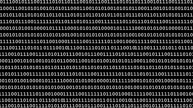 Der Binärcode