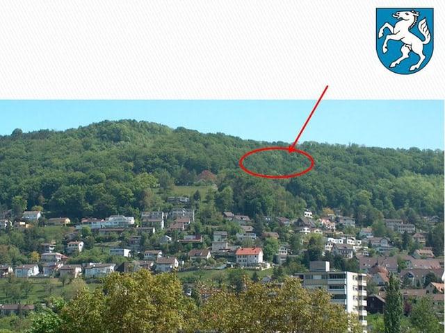 Bild von der einen talhälfe bei Füllinsdorf. Im Wald ist ein roter Kreis eingezeichnet und ein Pfeil zeigt auf den Ort, wo sich der Hang verschieb.