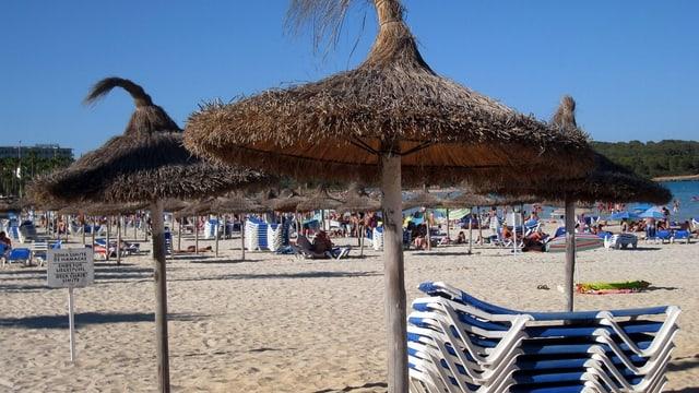 Strohzelte am Strand in Mallorca