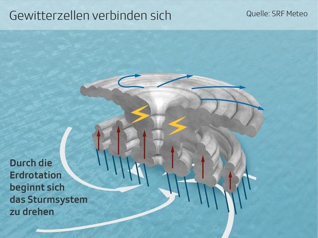 Infografik eines tropischen Wirbelsturms
