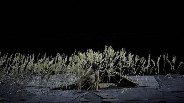 Eine Szene aus dem Stück The Great Tamer