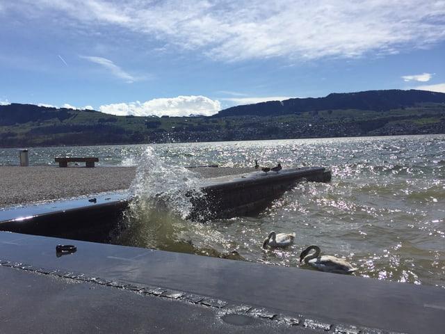 Föhnströmung über dem Zürichsee drückt die Wellen ans Ufer.