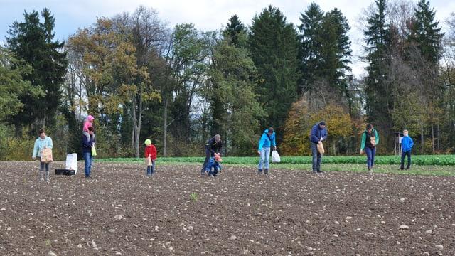 Leuten arbeiten auf einem Feld